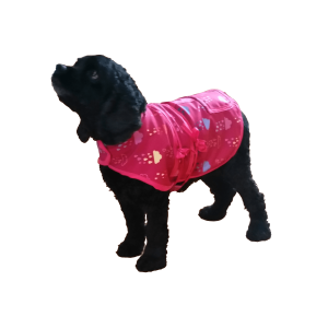 Doggie Day Coat