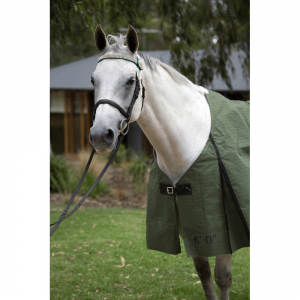 Heavy Canvas Horse Rug 440g
