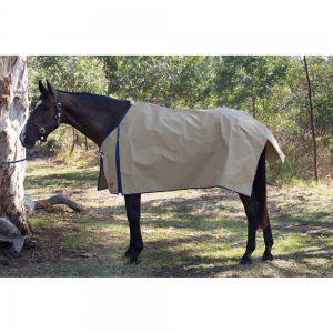 Light Canvas Horse Rug 270g