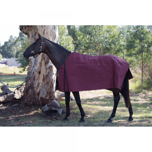 Medium Canvas Horse Rug 410g